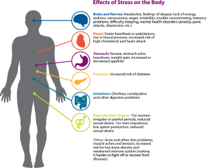 Effects-of-Stress-Image