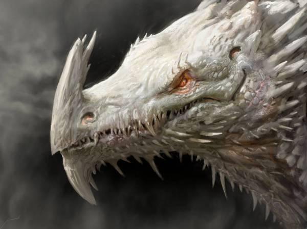 White Dragon by Manzanedo at Deviantart